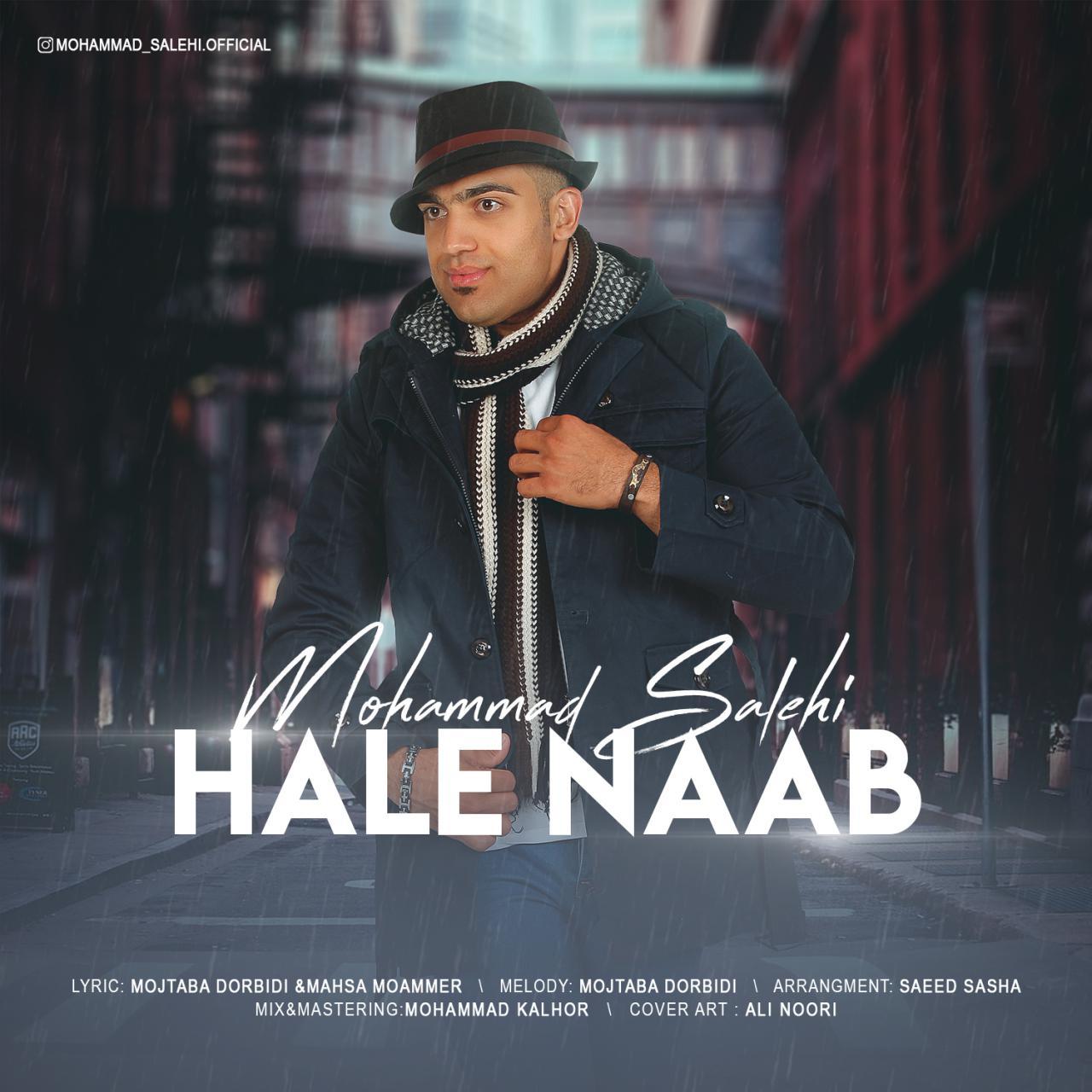 دانلود آهنگ جدید محمد صالحی به نام حال ناب
